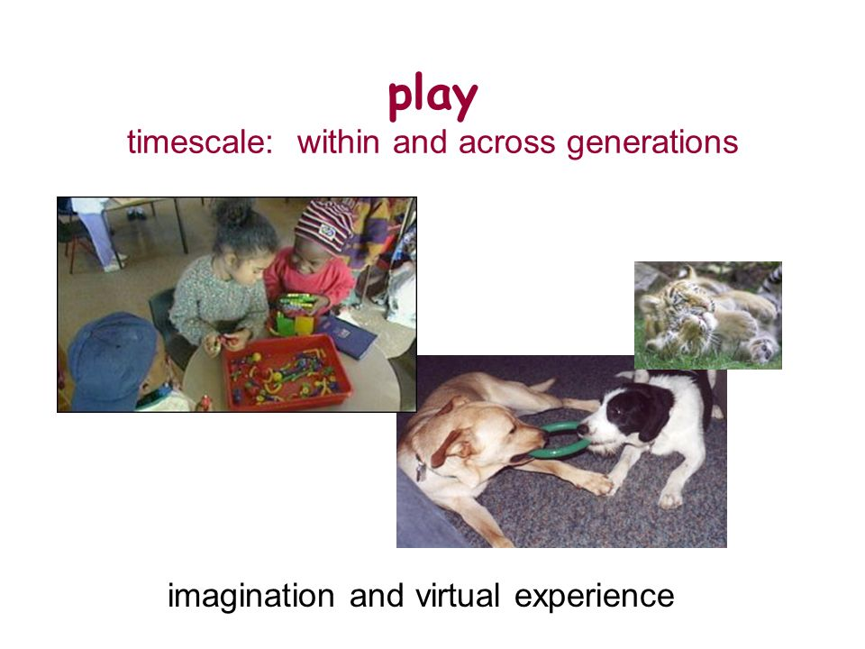 play timescale: within and across generations imagination and virtual experience