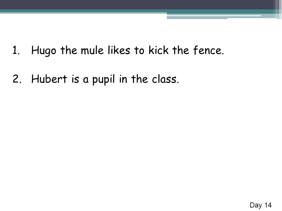 1.Hugo the mule likes to kick the fence. 2.Hubert is a pupil in the class. Day 14