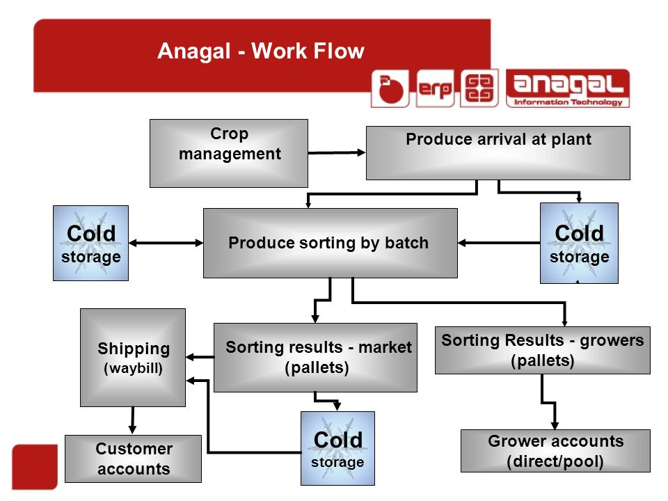 Anagal - Work Flow Grower accounts (direct/pool) Customer accounts Produce sorting by batch Cold storage Crop management Produce arrival at plant Cold storage Sorting Results - growers (pallets) Sorting results - market )pallets) Shipping (waybill) Cold storage