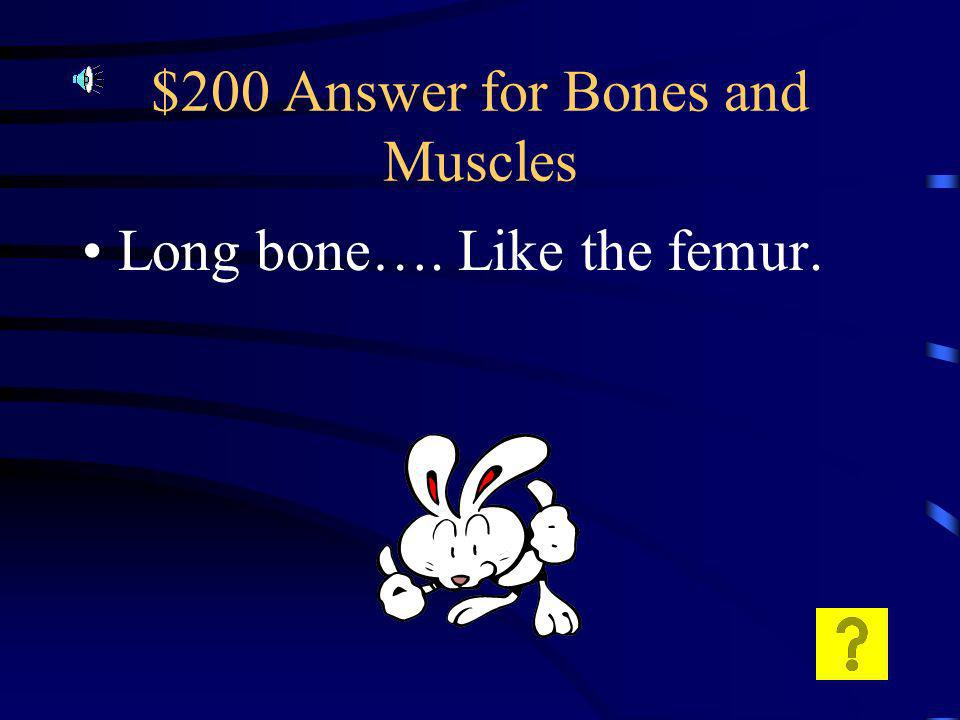 $200 Question for Bones and Muscles What type of bone produces bone lots of bone marrow