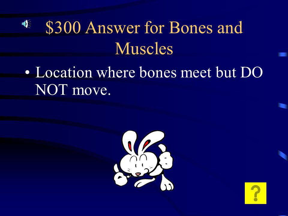$300 Question for Bones and Muscles What is a suture joint