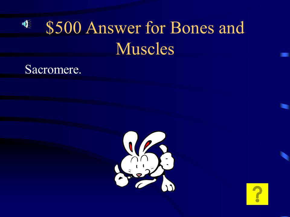 $500 Question for Bones and Muscles What is the functional unit of muscle contraction