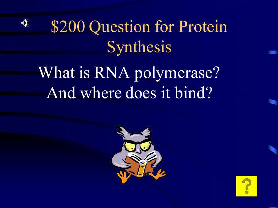 $100 Answer for Protein Synthesis A group of three nucleotides of m RNA