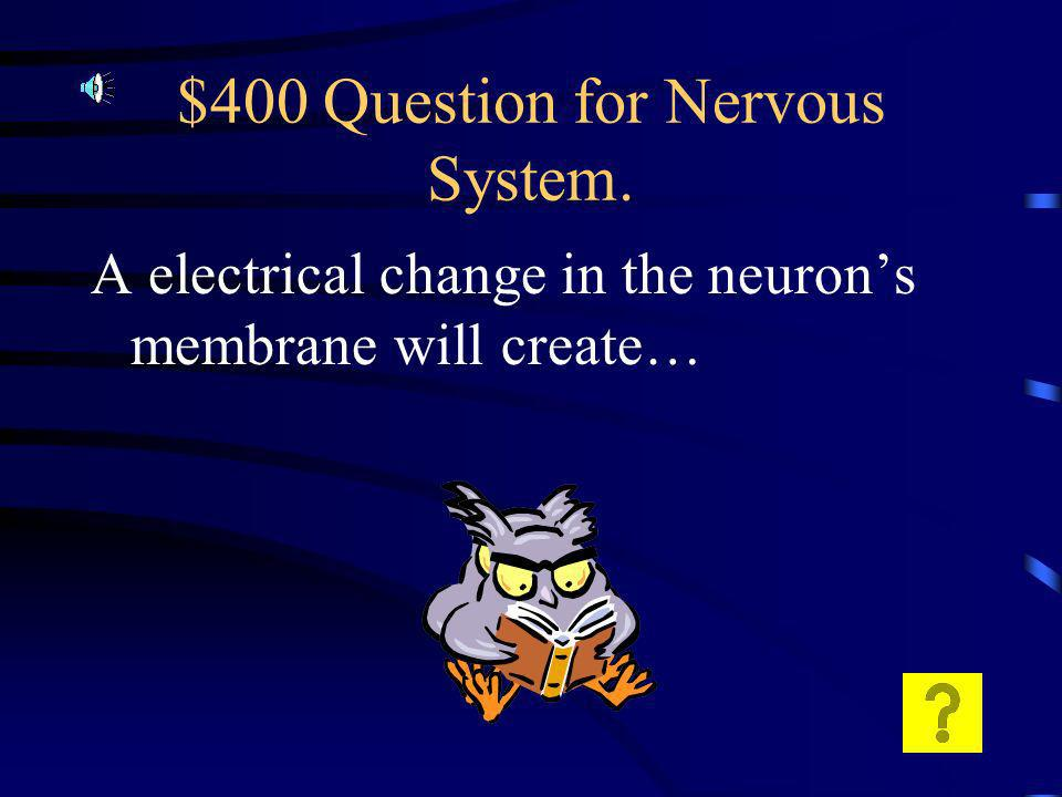 $300 Answer for Nervous System. There are more Sodium ions on the outside than in.