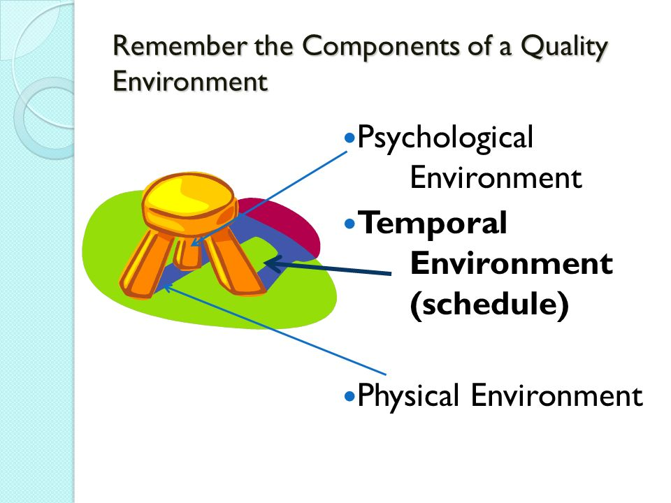 Remember the Components of a Quality Environment Psychological Environment Temporal Environment (schedule) Physical Environment