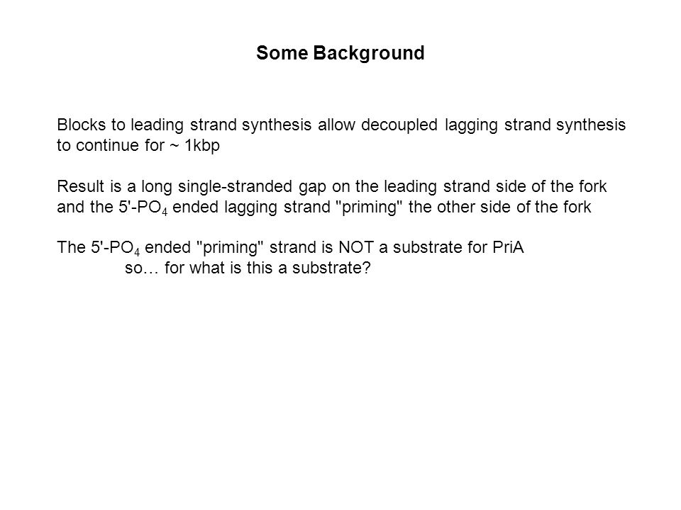 Some Background Blocks to leading strand synthesis allow decoupled lagging strand synthesis to continue for ~ 1kbp Result is a long single-stranded gap on the leading strand side of the fork and the 5 -PO 4 ended lagging strand priming the other side of the fork The 5 -PO 4 ended priming strand is NOT a substrate for PriA so… for what is this a substrate