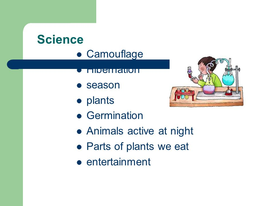 Science Camouflage Hibernation season plants Germination Animals active at night Parts of plants we eat entertainment