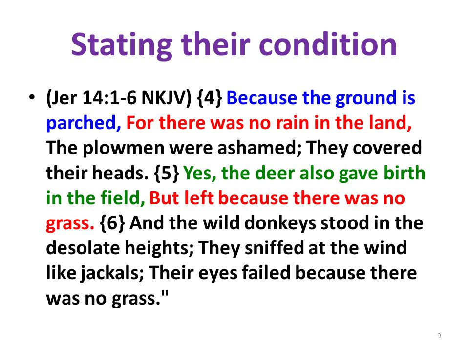 Stating their condition (Jer 14:1-6 NKJV) {4} Because the ground is parched, For there was no rain in the land, The plowmen were ashamed; They covered their heads.