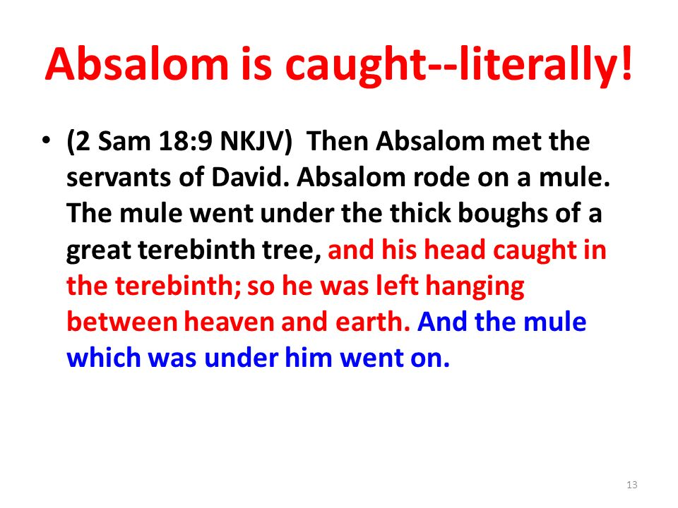 Absalom is caught--literally. (2 Sam 18:9 NKJV) Then Absalom met the servants of David.