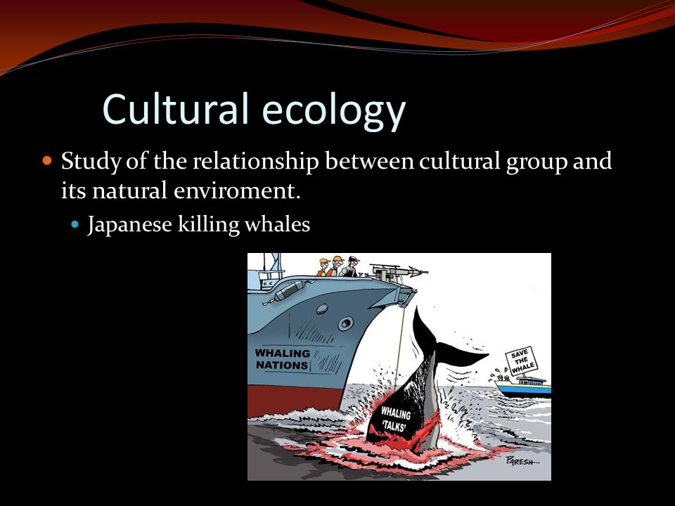 Cultural ecology Study of the relationship between cultural group and its natural enviroment.