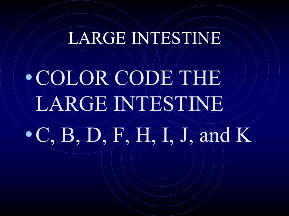 LARGE INTESTINE COLOR CODE THE LARGE INTESTINE C, B, D, F, H, I, J, and K