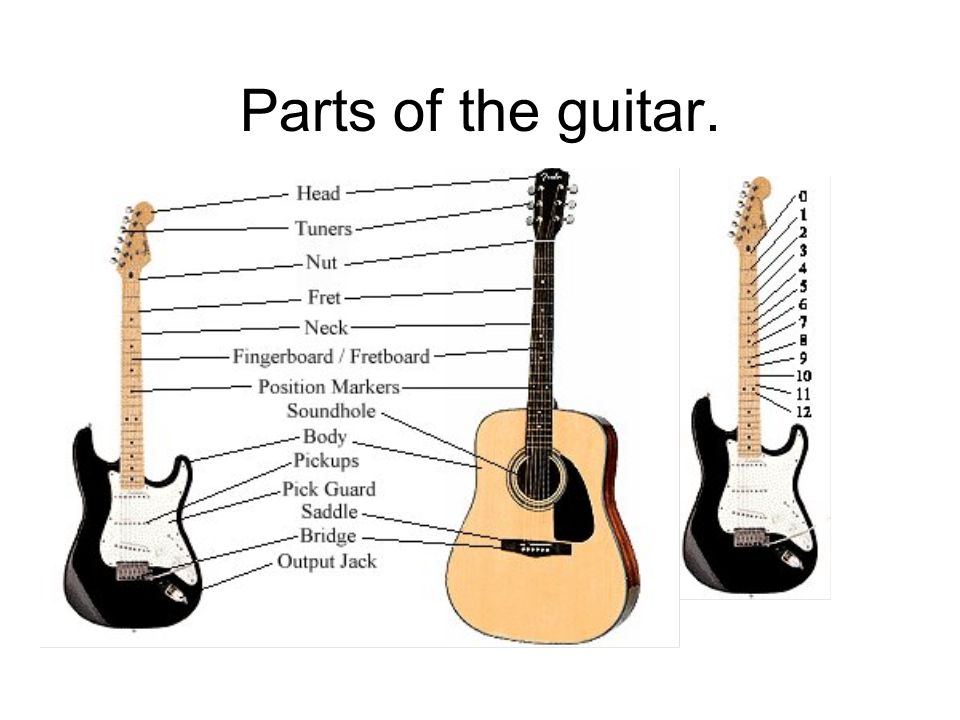 Parts of the guitar.