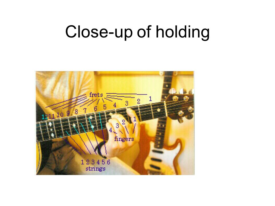 Close-up of holding