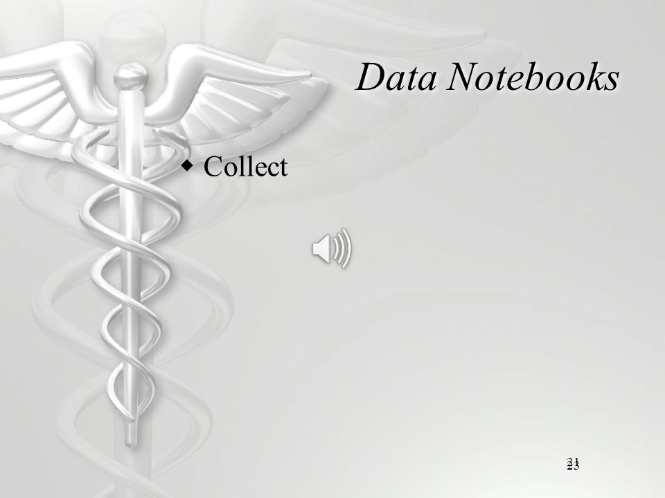 23 Data Notebooks Collect 21