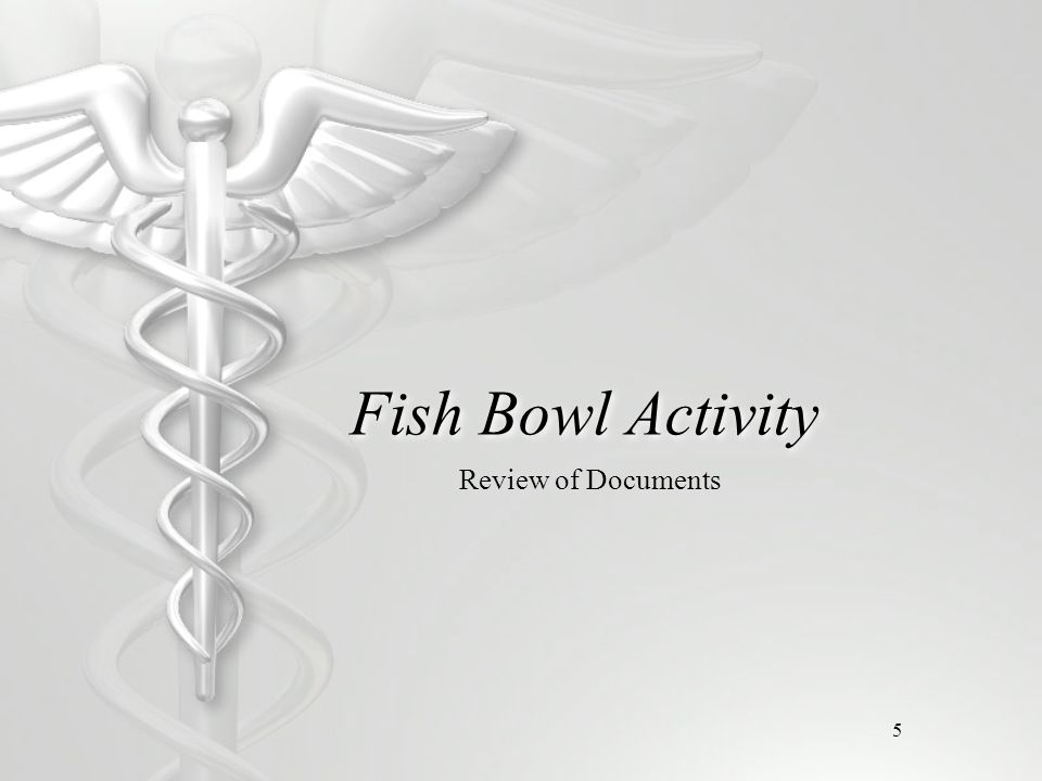 5 Fish Bowl Activity Review of Documents