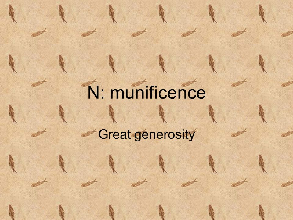 N: munificence Great generosity