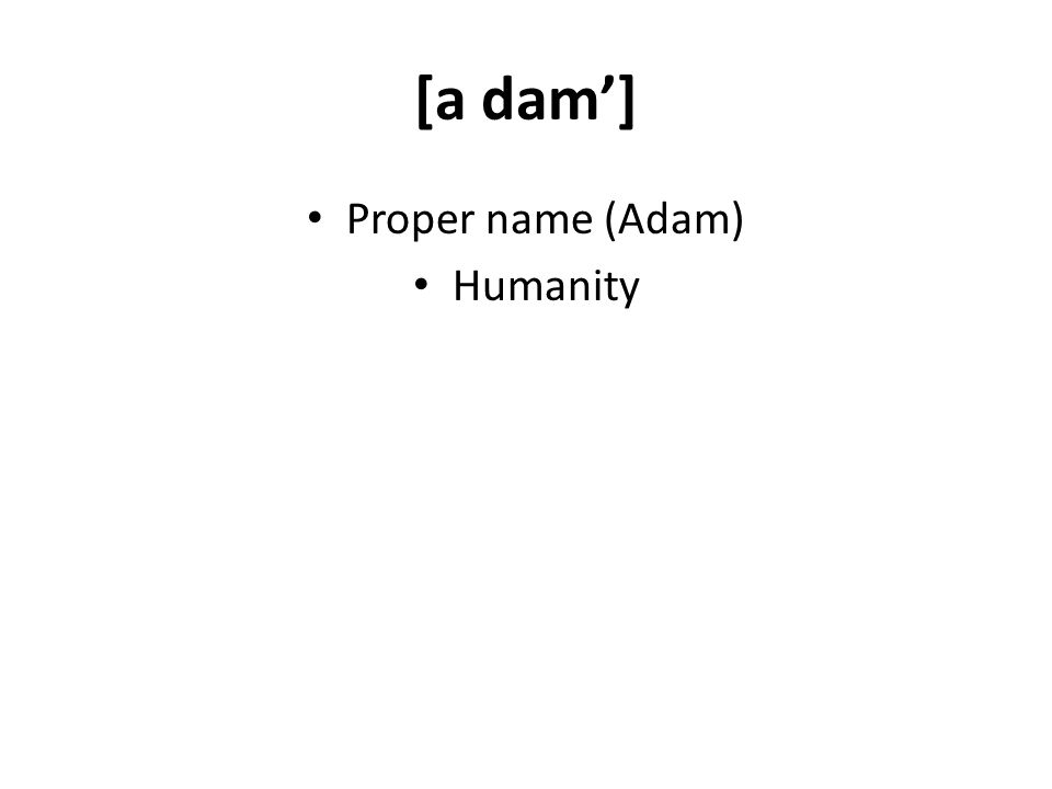 [a dam] Proper name (Adam) Humanity