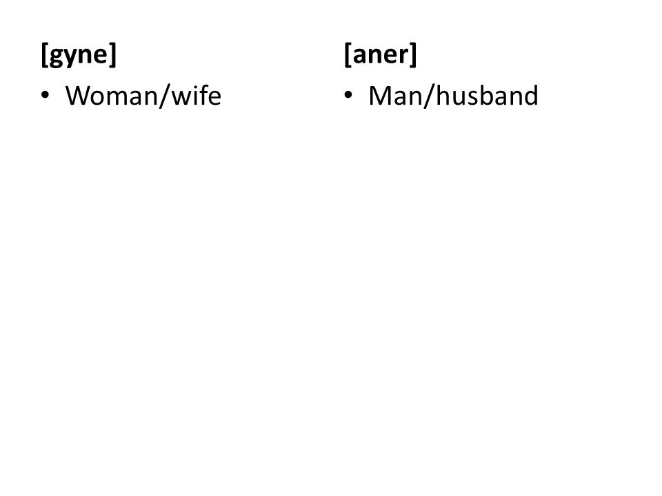 [gyne] Woman/wife [aner] Man/husband