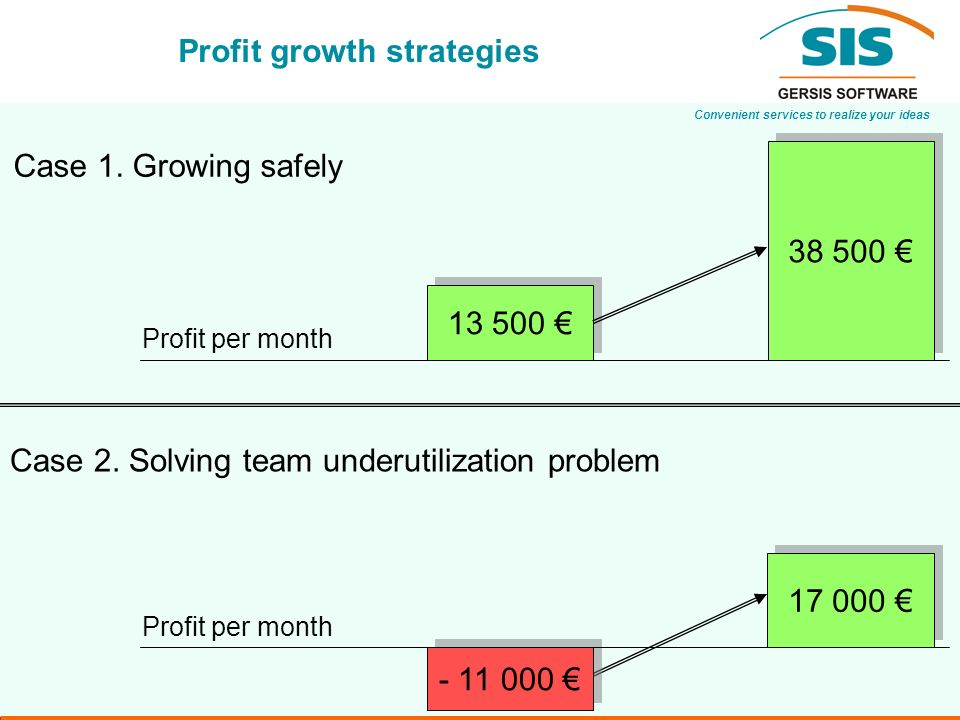 Convenient services to realize your ideas Profit growth strategies Case 1.