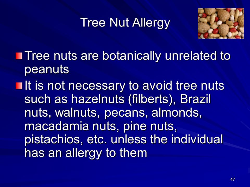 47 Tree Nut Allergy Tree nuts are botanically unrelated to peanuts It is not necessary to avoid tree nuts such as hazelnuts (filberts), Brazil nuts, walnuts, pecans, almonds, macadamia nuts, pine nuts, pistachios, etc.
