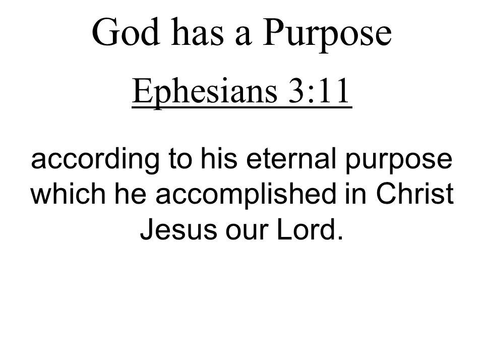 God has a Purpose Ephesians 3:11 according to his eternal purpose which he accomplished in Christ Jesus our Lord.