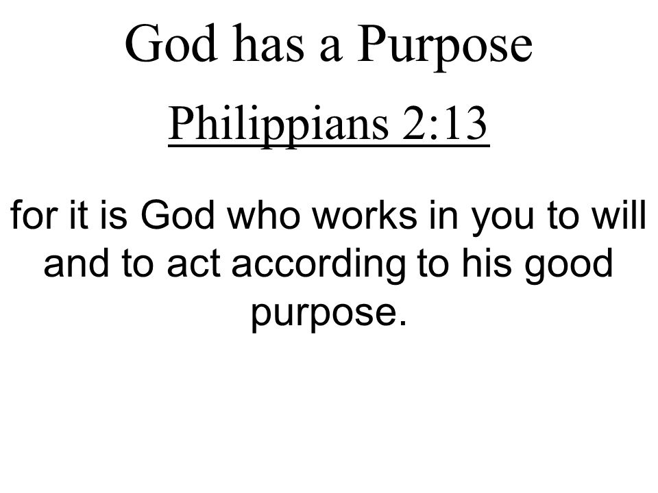God has a Purpose Philippians 2:13 for it is God who works in you to will and to act according to his good purpose.