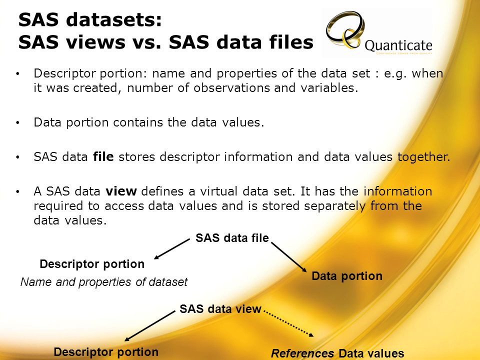 SAS datasets: SAS views vs.