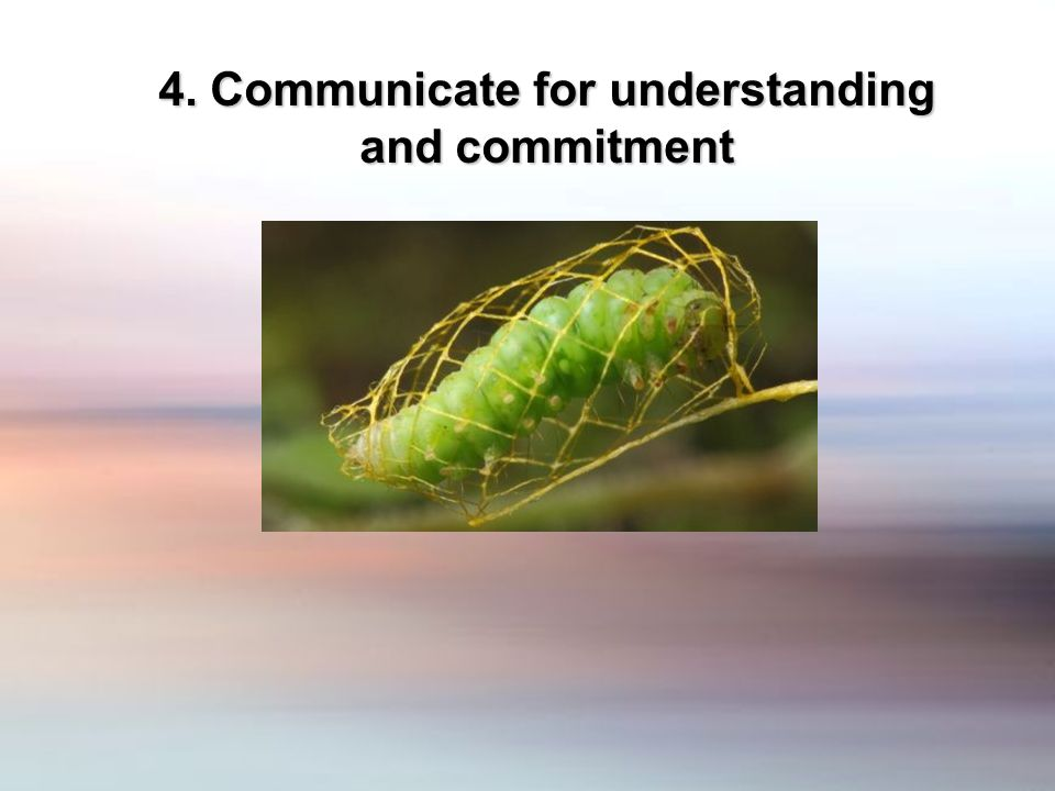 4. Communicate for understanding and commitment
