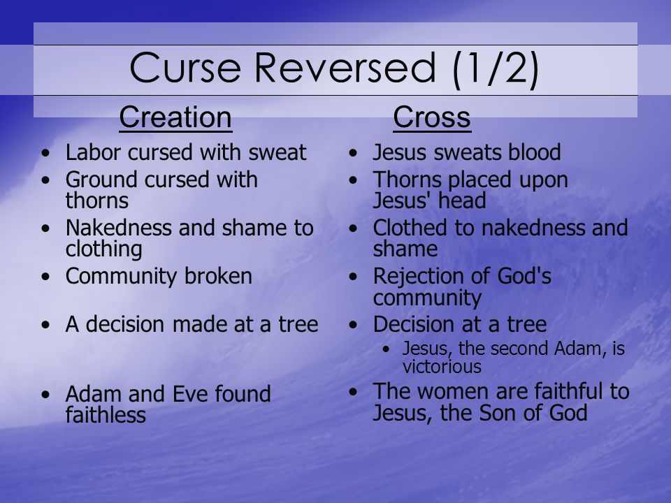 Curse Reversed (1/2) Labor cursed with sweat Ground cursed with thorns Nakedness and shame to clothing Community broken A decision made at a tree Adam and Eve found faithless Jesus sweats blood Thorns placed upon Jesus head Clothed to nakedness and shame Rejection of God s community Decision at a tree Jesus, the second Adam, is victorious The women are faithful to Jesus, the Son of God CreationCross