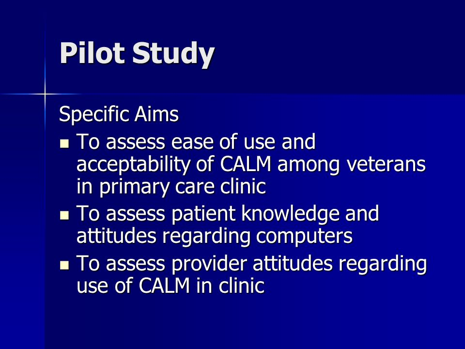 Pilot Study Specific Aims To assess ease of use and acceptability of CALM among veterans in primary care clinic To assess ease of use and acceptability of CALM among veterans in primary care clinic To assess patient knowledge and attitudes regarding computers To assess patient knowledge and attitudes regarding computers To assess provider attitudes regarding use of CALM in clinic To assess provider attitudes regarding use of CALM in clinic