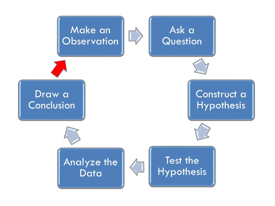 Make an Observation Ask a Question Construct a Hypothesis Test the Hypothesis Analyze the Data Draw a Conclusion