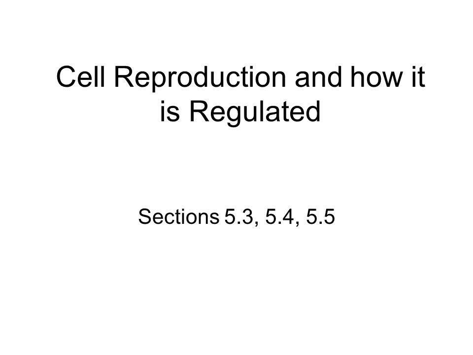 Cell Reproduction and how it is Regulated Sections 5.3, 5.4, 5.5