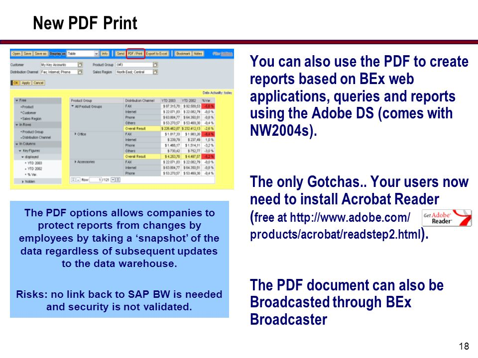 18 New PDF Print You can also use the PDF to create reports based on BEx web applications, queries and reports using the Adobe DS (comes with NW2004s).