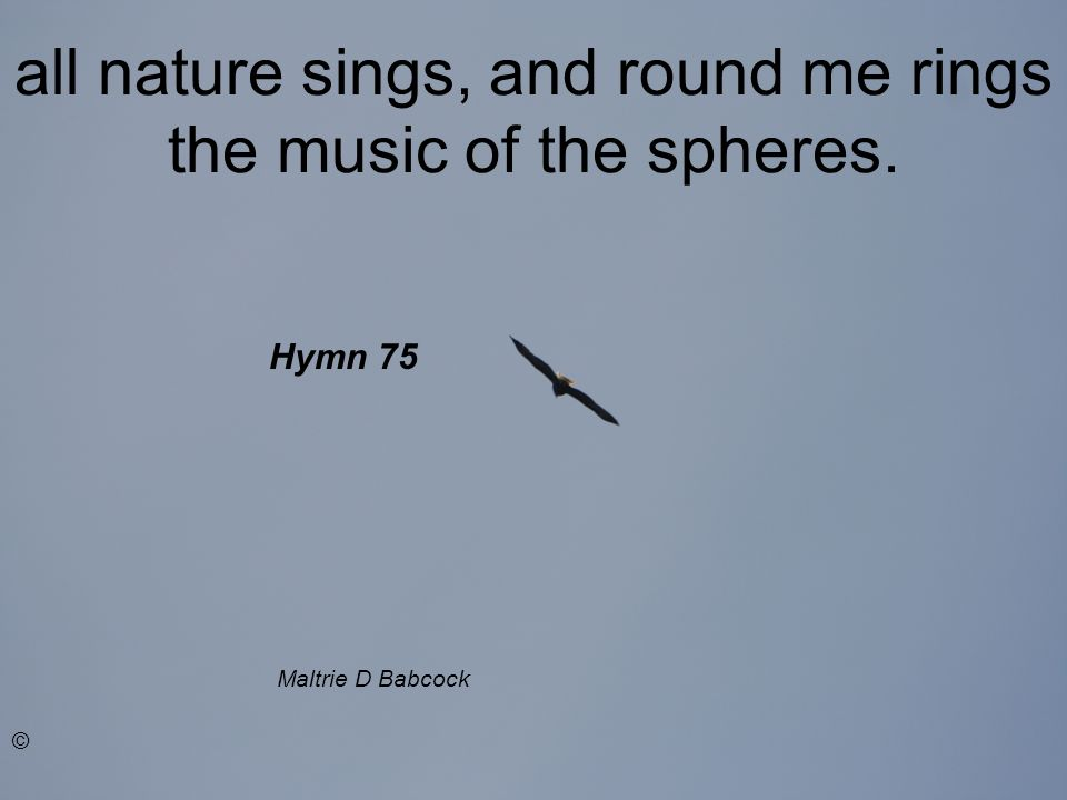 all nature sings, and round me rings the music of the spheres. Maltrie D Babcock © Hymn 75
