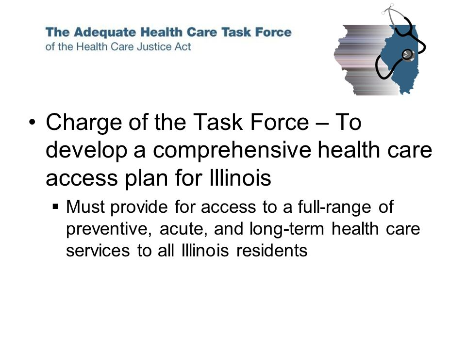 Charge of the Task Force – To develop a comprehensive health care access plan for Illinois Must provide for access to a full-range of preventive, acute, and long-term health care services to all Illinois residents