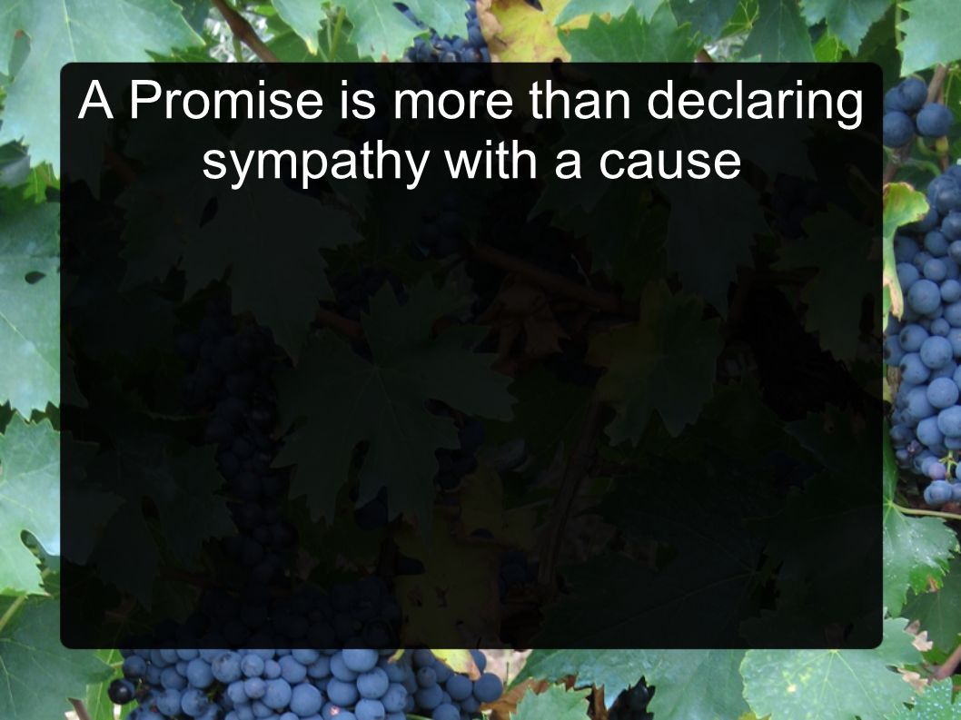 A Promise is more than declaring sympathy with a cause