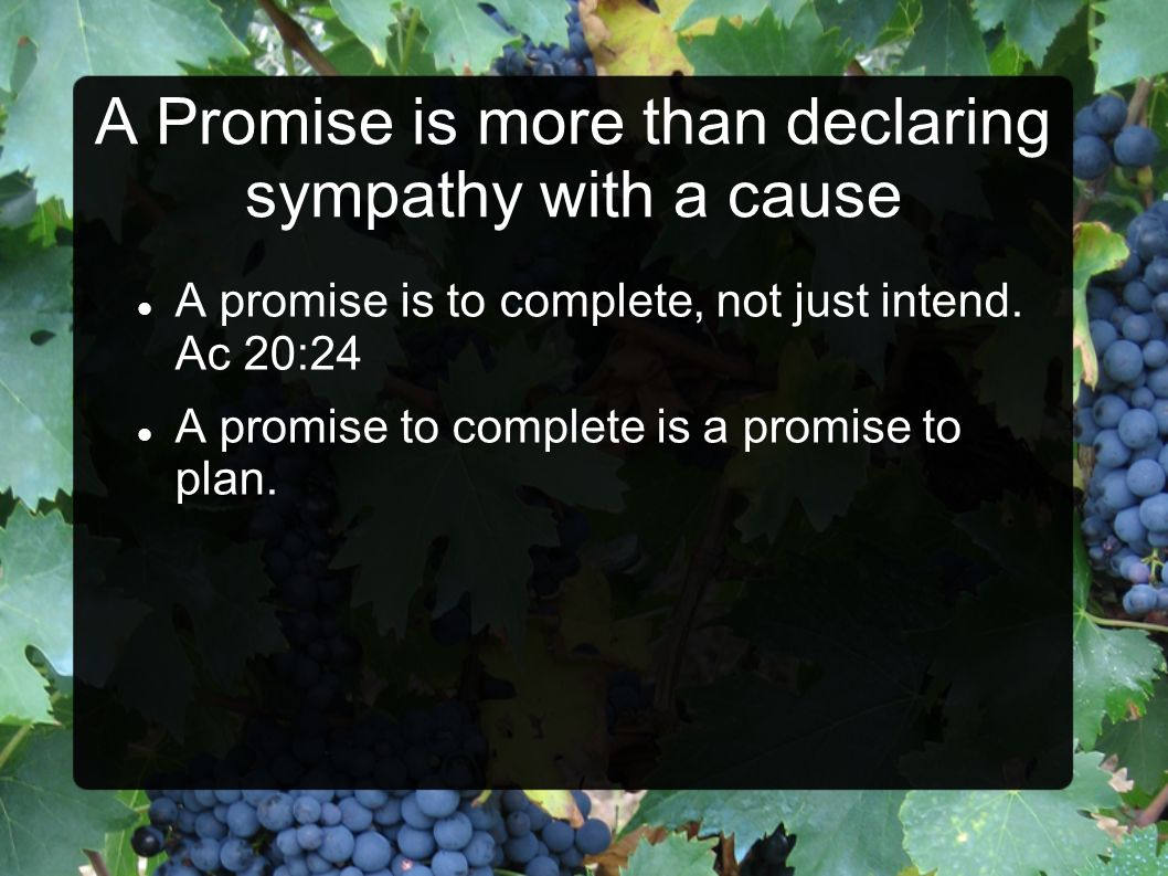 A Promise is more than declaring sympathy with a cause A promise is to complete, not just intend.