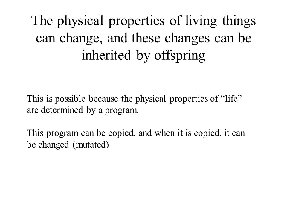 This is possible because the physical properties of life are determined by a program.