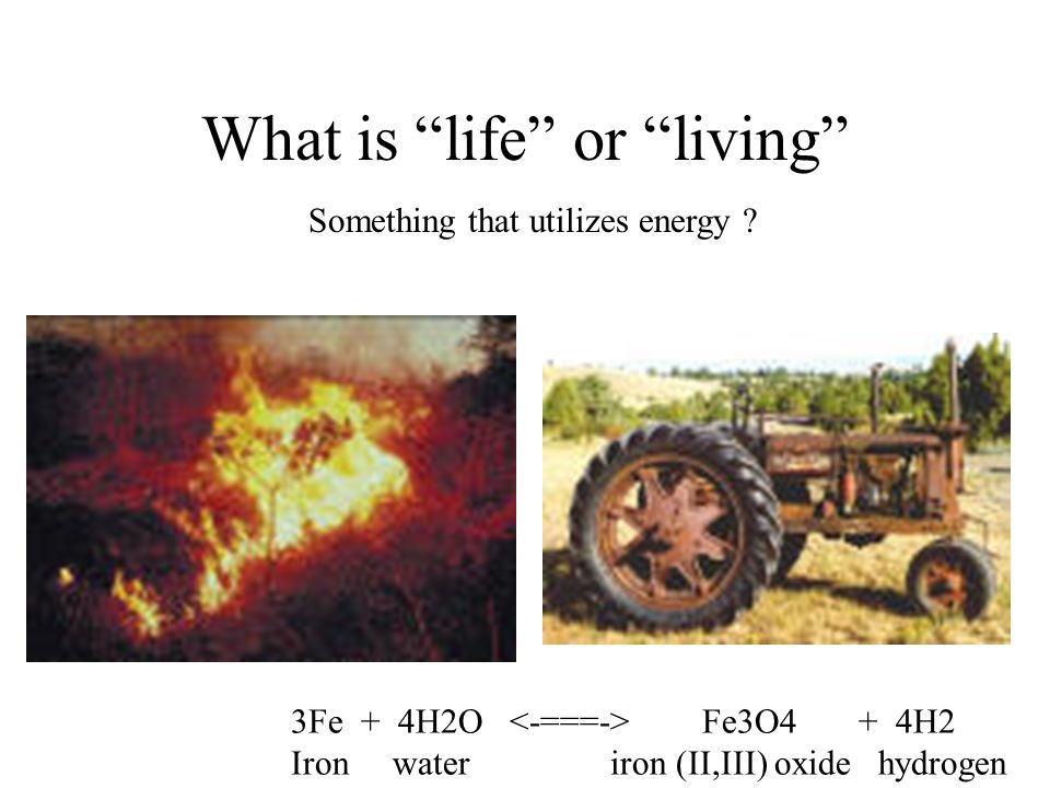 What is life or living Something that utilizes energy .