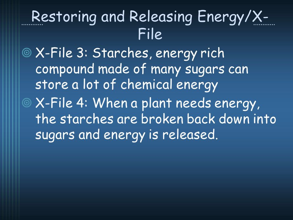 Restoring and Releasing Energy/X- File X-File 3: Starches, energy rich compound made of many sugars can store a lot of chemical energy X-File 4: When a plant needs energy, the starches are broken back down into sugars and energy is released.