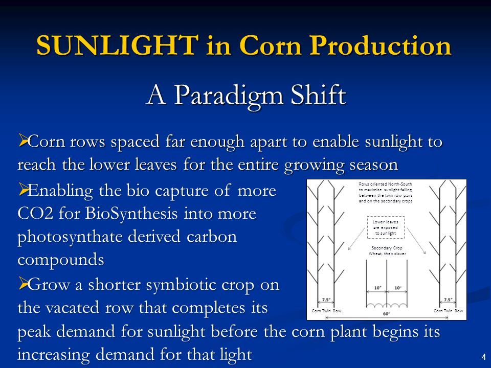 4 SUNLIGHT in Corn Production A Paradigm Shift Corn rows spaced far enough apart to enable sunlight to reach the lower leaves for the entire growing season Corn rows spaced far enough apart to enable sunlight to reach the lower leaves for the entire growing season Enabling the bio capture of more CO2 for BioSynthesis into more photosynthate derived carbon compounds Enabling the bio capture of more CO2 for BioSynthesis into more photosynthate derived carbon compounds Grow a shorter symbiotic crop on the vacated row that completes its Grow a shorter symbiotic crop on the vacated row that completes its peak demand for sunlight before the corn plant begins its increasing demand for that light Rows oriented North-South to maximize sunlight falling between the twin row pairs and on the secondary crops Lower leaves are exposed to sunlight Secondary Crop Wheat, then clover Corn Twin Row