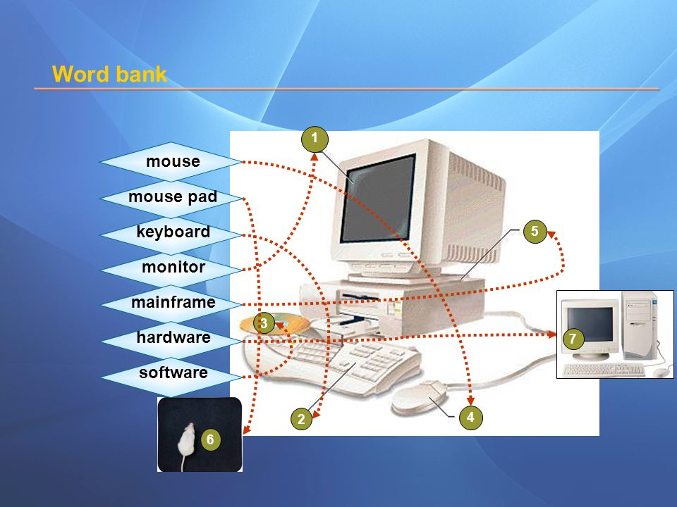 Word bank software --- hardware ---