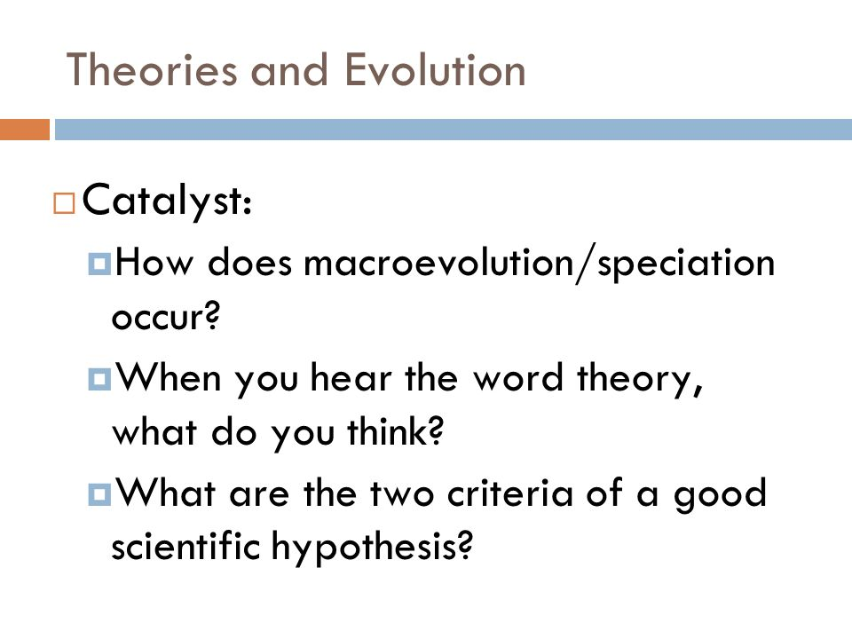 Theories and Evolution Catalyst: How does macroevolution/speciation occur.