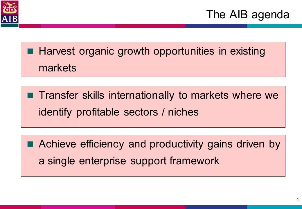 4 The AIB agenda Transfer skills internationally to markets where we identify profitable sectors / niches Harvest organic growth opportunities in existing markets Achieve efficiency and productivity gains driven by a single enterprise support framework