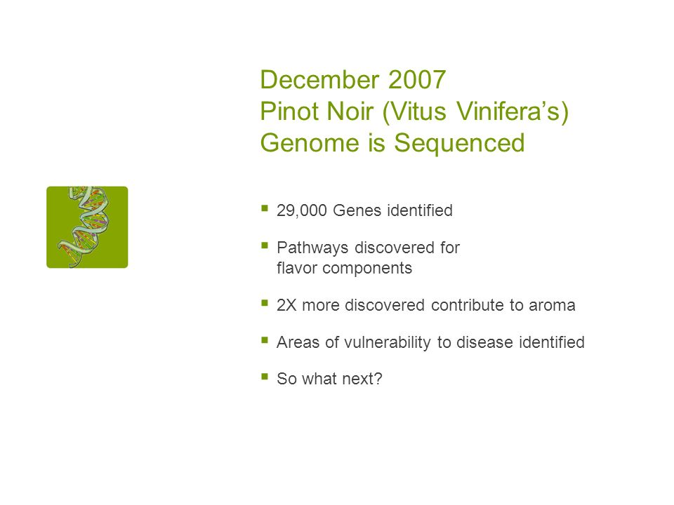 December 2007 Pinot Noir (Vitus Viniferas) Genome is Sequenced 29,000 Genes identified Pathways discovered for flavor components 2X more discovered contribute to aroma Areas of vulnerability to disease identified So what next