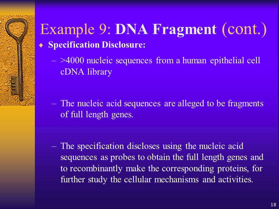 18 Example 9: DNA Fragment (cont.) Specification Disclosure: –>4000 nucleic sequences from a human epithelial cell cDNA library –The nucleic acid sequences are alleged to be fragments of full length genes.