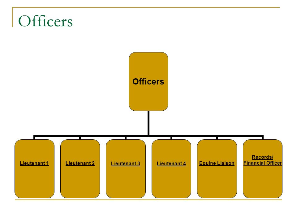 Officers Lieutenant 1Lieutenant 2Lieutenant 3Lieutenant 4Equine Liaison Records/ Financial Officer