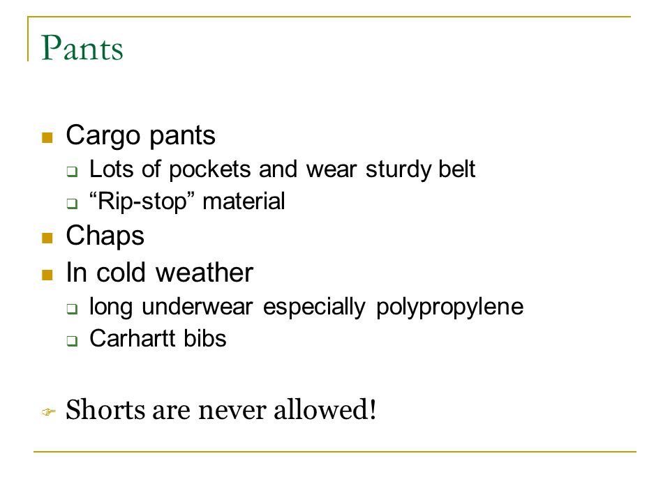 Pants Cargo pants Lots of pockets and wear sturdy belt Rip-stop material Chaps In cold weather long underwear especially polypropylene Carhartt bibs Shorts are never allowed!