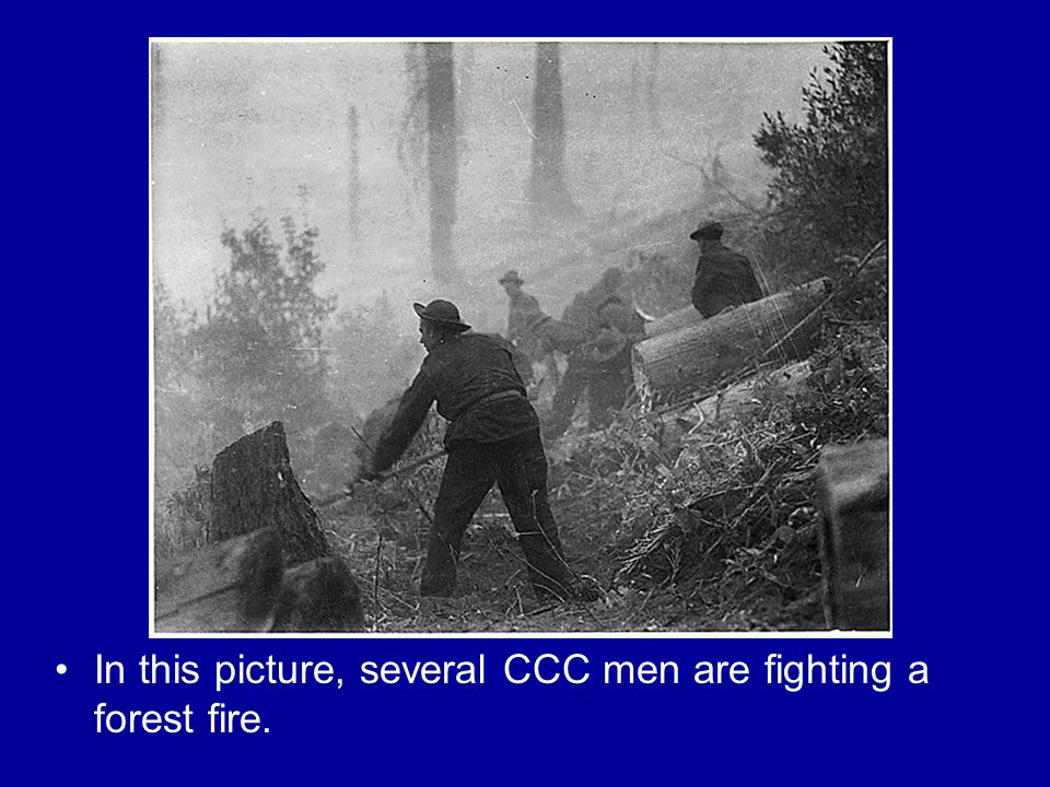 In this picture, several CCC men are fighting a forest fire.