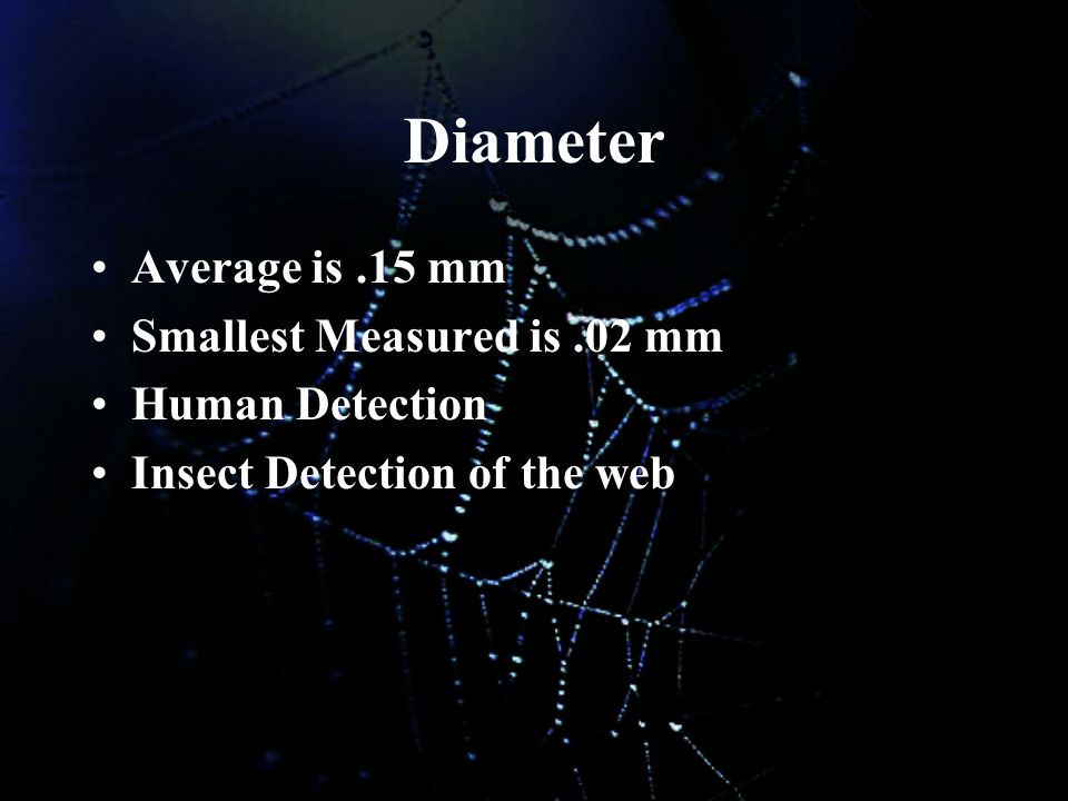 Diameter Average is.15 mm Smallest Measured is.02 mm Human Detection Insect Detection of the web